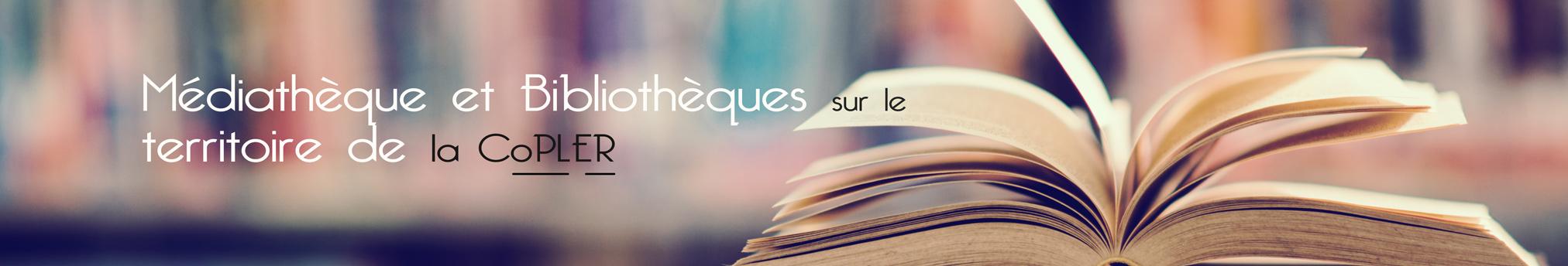 bandeau_bibliotheque