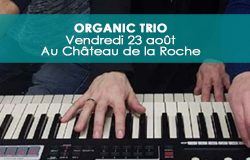 23aout-organictrio